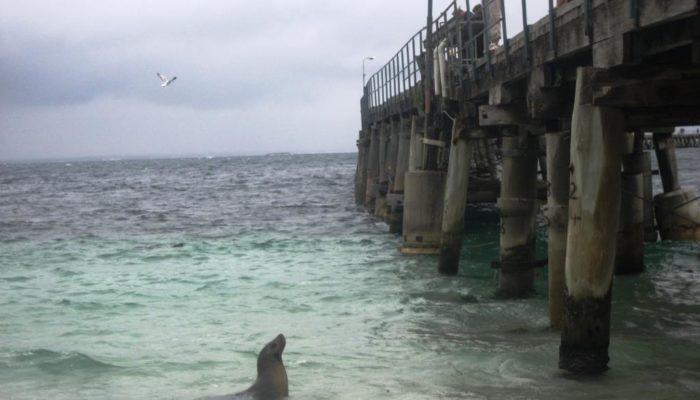 Bremer Bay (28)