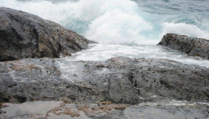 Bremer Bay (43)