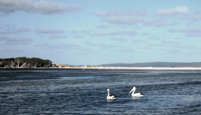 Bremer Bay (48)