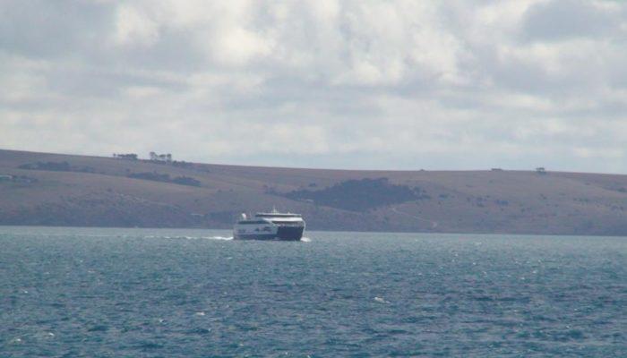 Kangaroo Island (10)