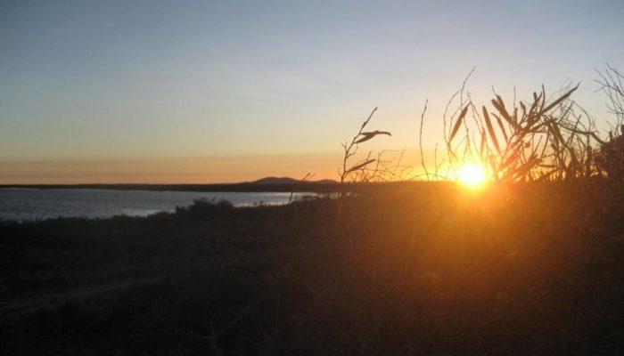 Port Augusta (15)