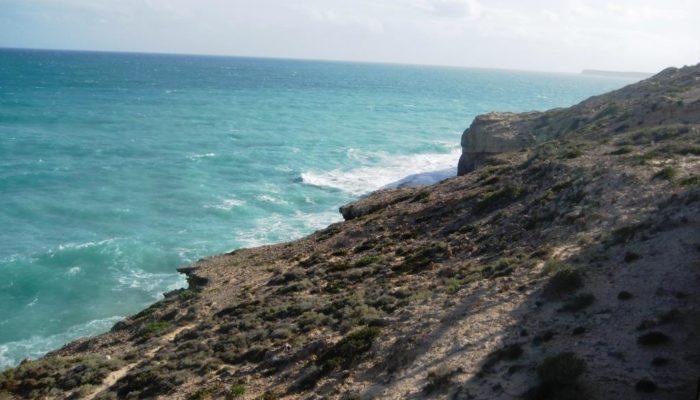Streaky Bay (14)
